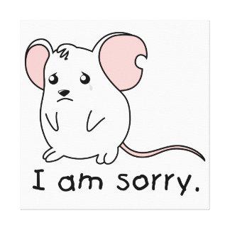 Apology Wrapped Canvas Prints   Zazzle