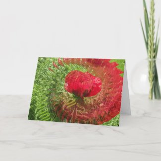 Illlusion Of A Poppy card