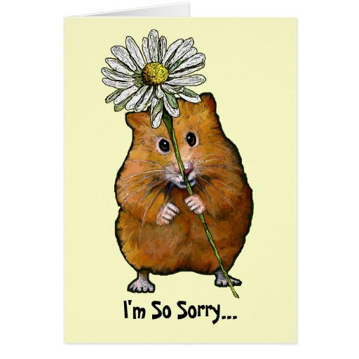 I'm So Sorry, Cute Hamster with Big Daisy, Apology Card ...