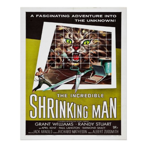 INCREDIBLE SHRINKING MAN POSTER | Zazzle