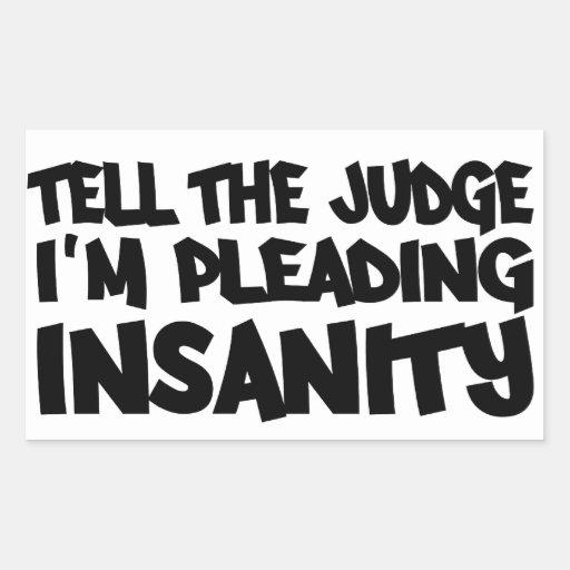 Insanity Defense Essay