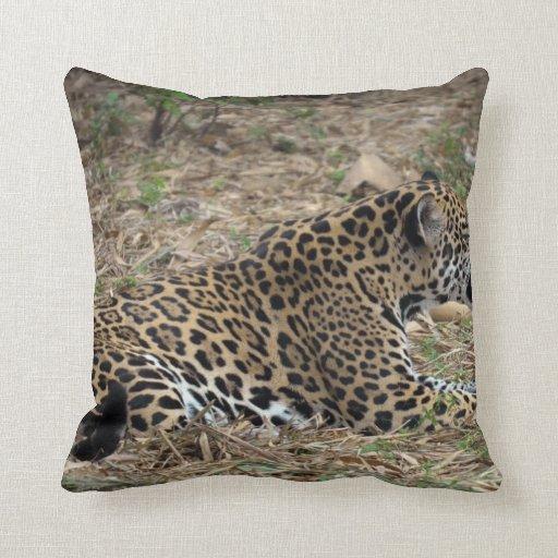Snarling Jaguar: Jaguar Cat Snarling Side View Feline Pillow