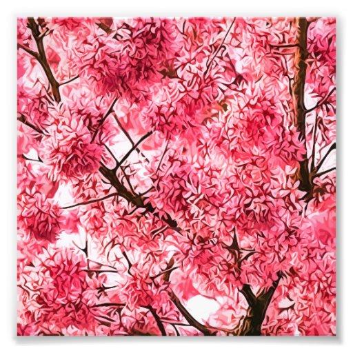 Japanese Cherry Blossom Tree (2013) Art Photo | Zazzle