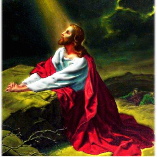 Jesus Christ Praying In The Garden Of Gethsemane Photo Cut