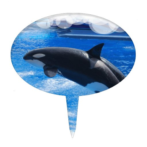 Orca Whale Cake Toppers Orca Whale Cake Picks Amp Decorations