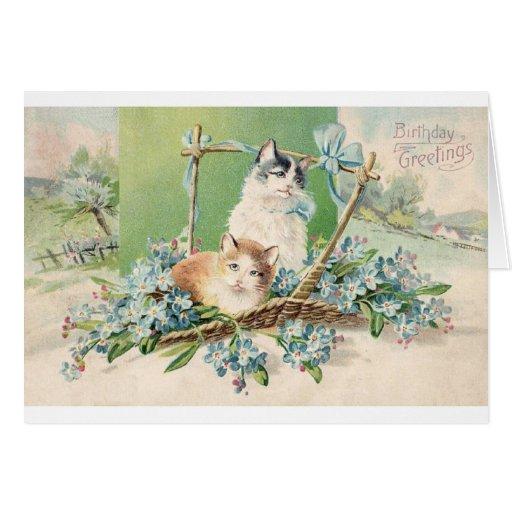 Kitty Cat Birthday Greetings Greeting Cards