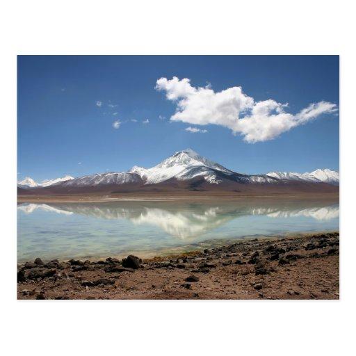 laguna blanca (bolivia) postcard   Zazzle  laguna blanca (...