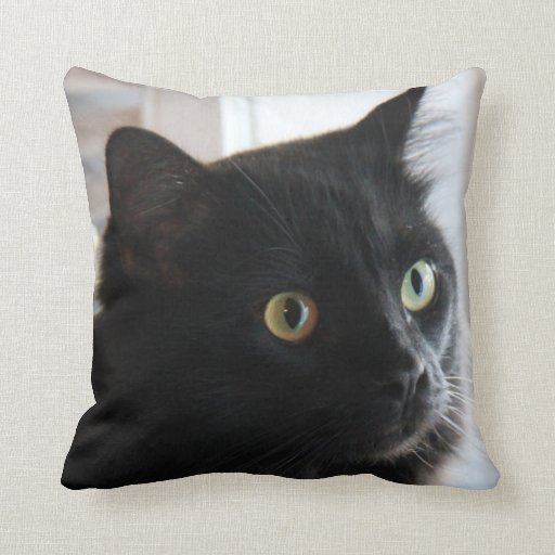 Large Eyed Black Cat Pillow Home Or Dorm Throw Pillow