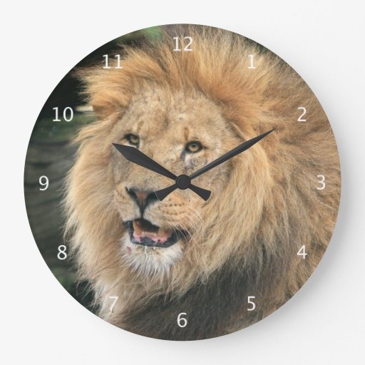 Lion Head Male Beautiful Photo Portrait Large Clock Zazzle