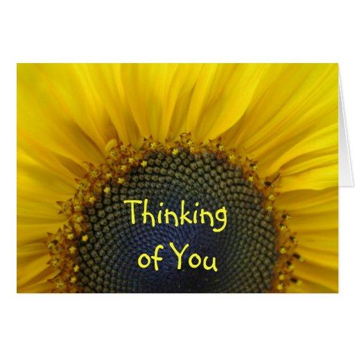 Macro Sunflower Thinking of you Card | Zazzle