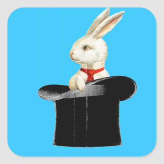 magic hat rabbit - photo #30