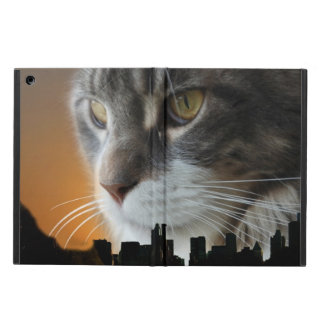 Maine Coon over NYC Co...