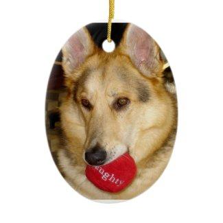 Naughty Dog Ornament ornament