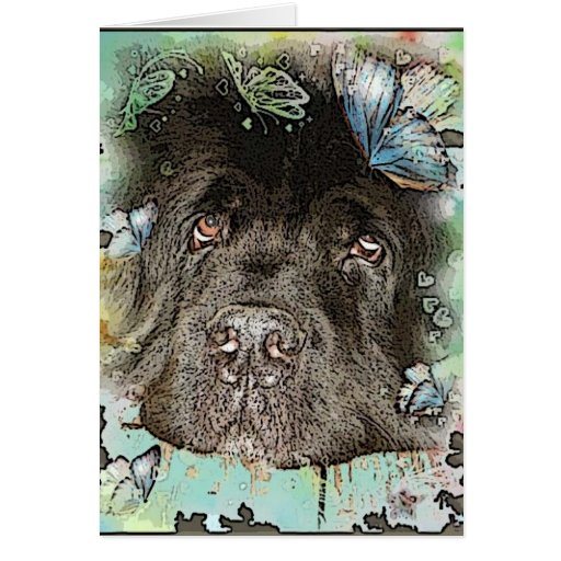 Newfoundland Dogs Cards, Newfoundland Dogs Card Templates ...