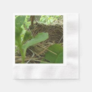Essay on empty nest