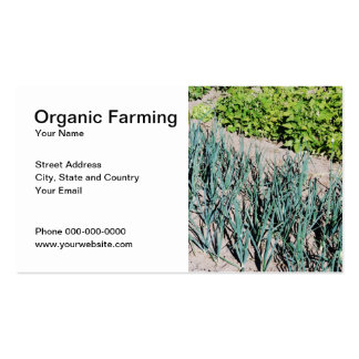 organic farming business plan samples
