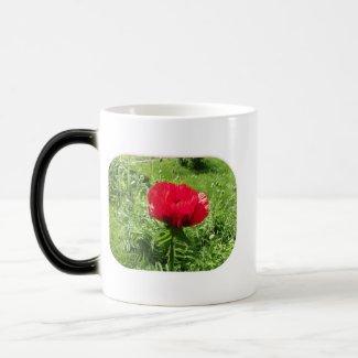 Oriental Red Poppy Morphing Mug mug