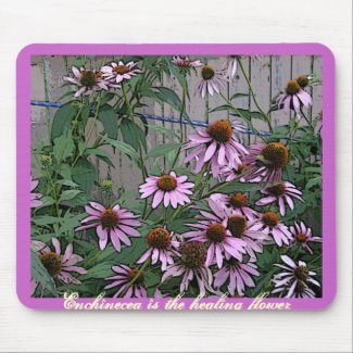 Painted Purple Coneflower mousepad