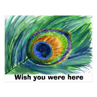 Peacock feather wish you were here postcards for Wish you were here postcard template