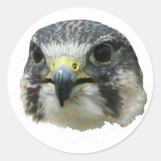 falcon 9 sticker - photo #25