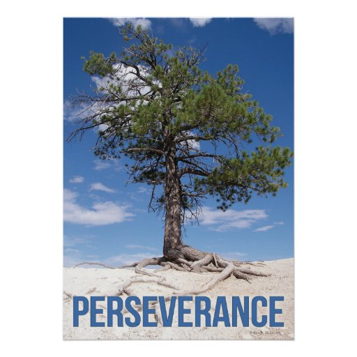 Persistence Motivational Quotes: Perseverance Tree Motivational Poster