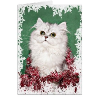 Kitten Christmas Cards.Persian Cat Christmas Cards Archives The Cool Card Shop