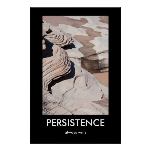 Persistence Motivational Quotes: PERSISTENCE, Always Wins Demotivational Poster