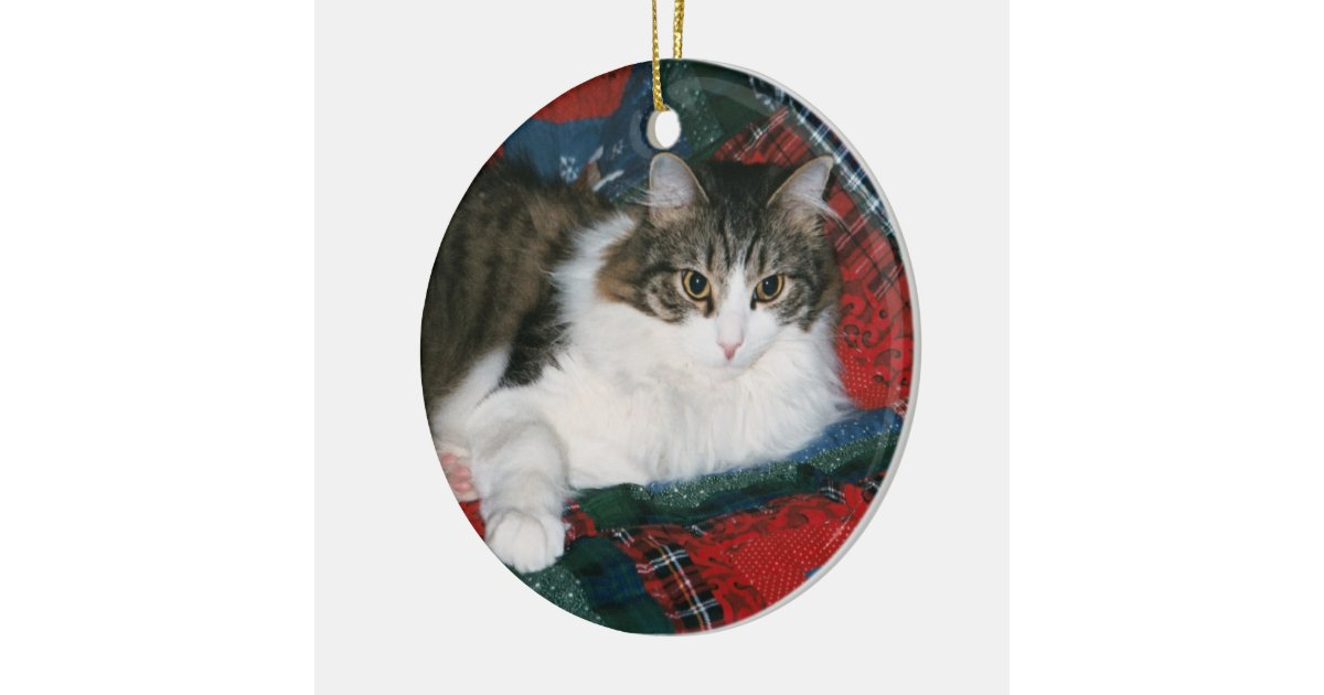 Pet Memorial Christmas Ornament | Zazzle