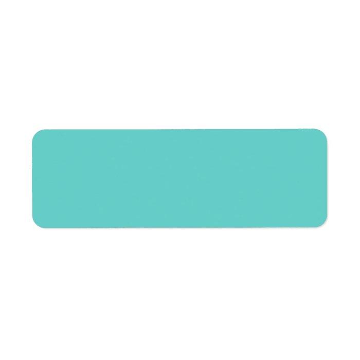 Plain aqua turquoise blue solid background blank return