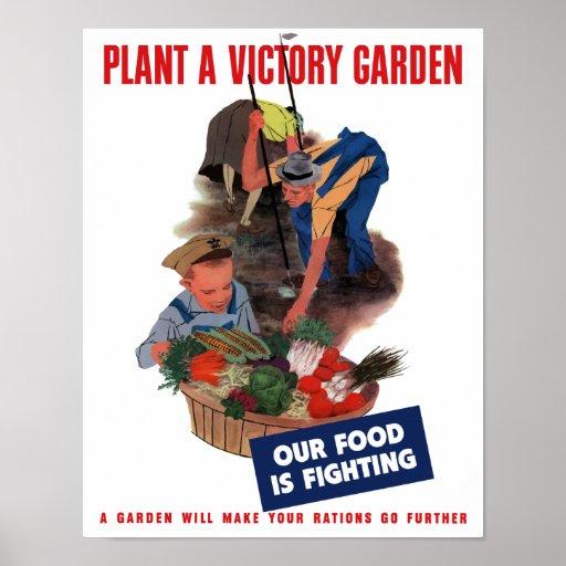 Victory Garden Posters, Victory Garden Prints, Art Prints