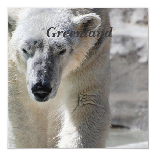 1,000+ Polar Bear Invitations, Polar Bear Announcements