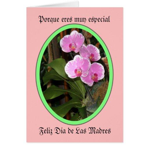 Porque eres muy especial feliz dia de las madres card | Zazzle
