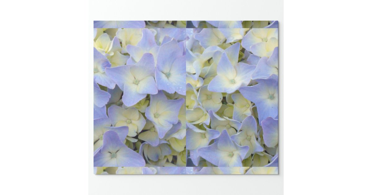 Pretty Blue Music Scrapbook Paper Pad 8x8 Decorative ...  Pretty Blue Paper