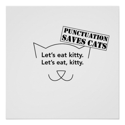 Punctuation Saves Cats Poster   Zazzle