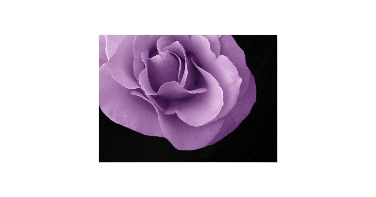 Purple Rose Wedding Invitations: Purple Roses Wedding Invitation Metallic