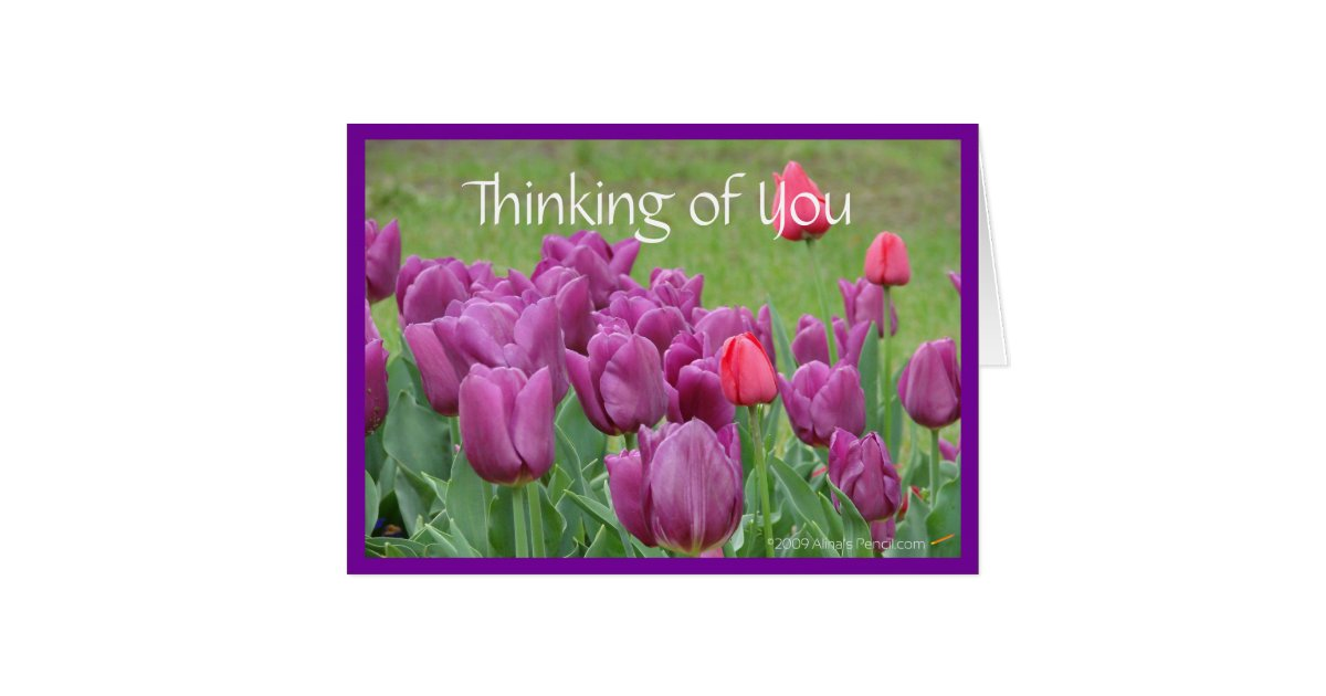 purple tulips flower thinking of you card template zazzle. Black Bedroom Furniture Sets. Home Design Ideas
