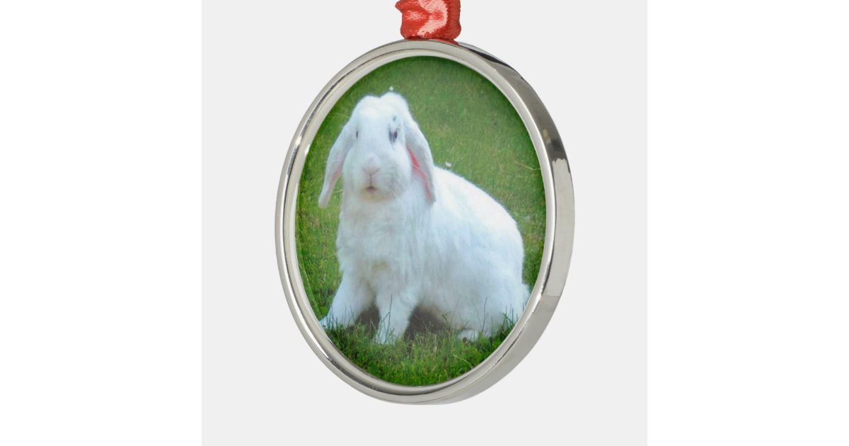 rabbit christmas ornament | Zazzle