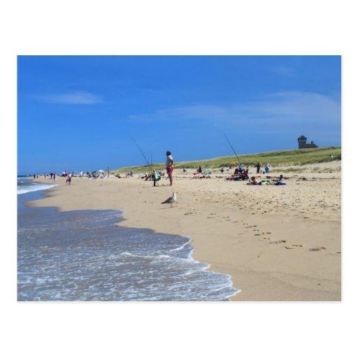 Cape Cod National Sea Shore: Race Point Beach Cape Cod National Seashore Postcard