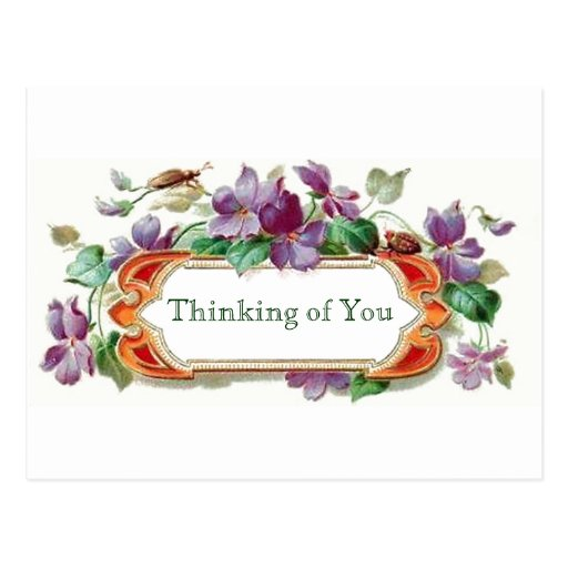 Retro Style Thinking of You Vintage Floral Violets ...