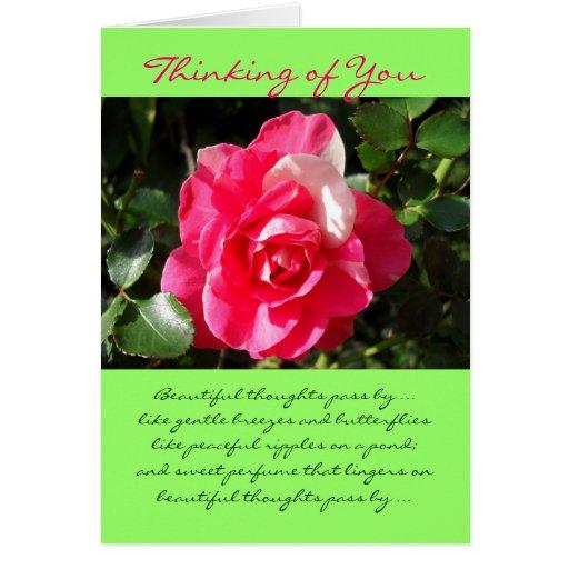 Rose... Thinking of You. Card | Zazzle