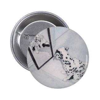 Roxy Buttons Amp Pins Zazzle