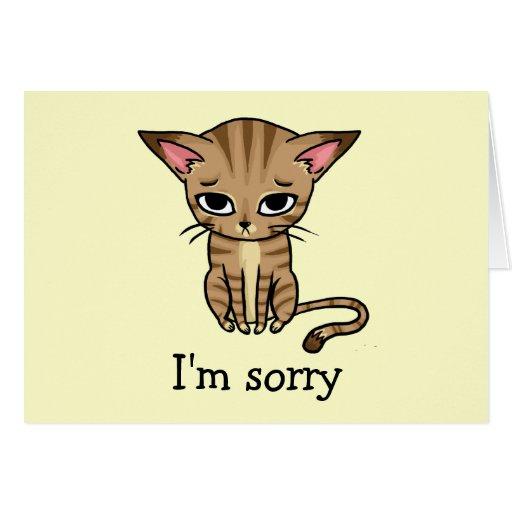 Sad Sorry Images: Sad Sorry Kitty Greeting Card