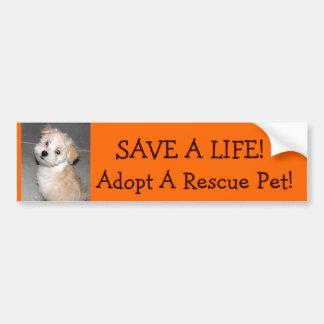 Adopt A Pet