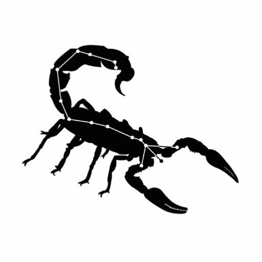 Scorpio Constellation/Zodiac Photo Sculpture