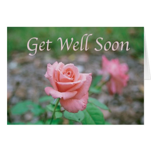 Get Well Scripture Quotes: Scripture Card -- Get Well Soon With Rose