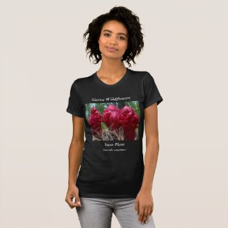 Sierra Wildflowers T-Shirt Gift for Nature Lovers