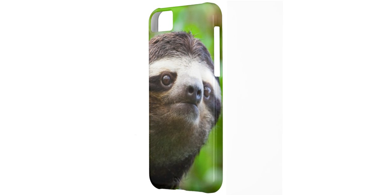 Sloth Phone Case Iphone