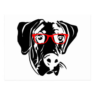R Great Danes Smart Smart Dog Great Dane with