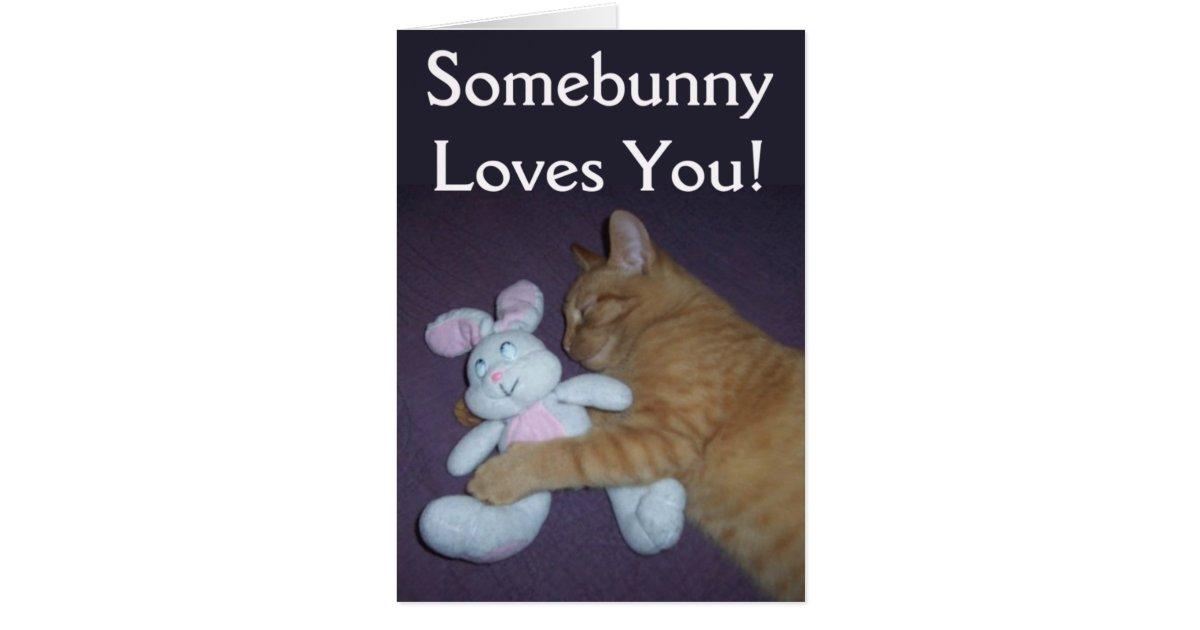 somebunny loves you cat easter card zazzle. Black Bedroom Furniture Sets. Home Design Ideas