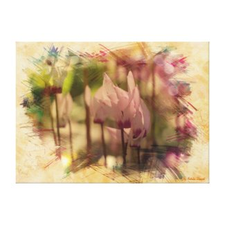 Spring cyclamen stretched canvas prints